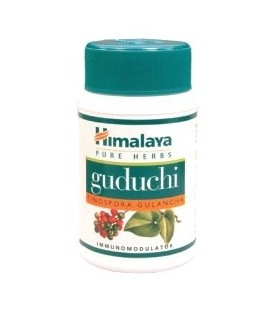 Guduchi Himalaya (Tinospora Cordifolia) na odporność