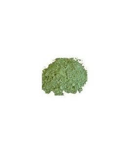 Shankpushpi Proszek 100g (Powder)