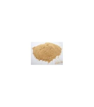 Amla (Amalaki) Proszek 100g (Powder) - Naturalna witamina C