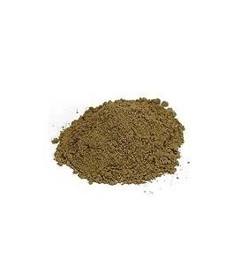 Nagarmotha Proszek 100g (Powder)