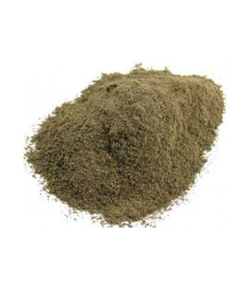 Brahmi Proszek 100g (Powder)