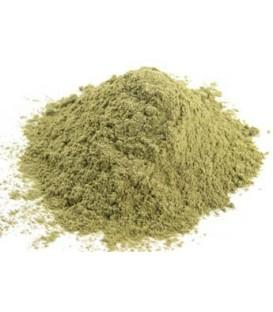 Bhringraj Proszek 100g (Powder)