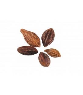 Haritaki (Harada) suszone owoce 100g