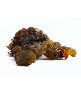 Guggul (Commiphora wightii) indyjska żywica 100g