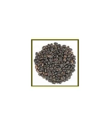 Kapikachhu (Mucuna pruriens) nasiona 100g