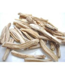 Shatavari (Asparagus racemosus, Szparag lekarski) korzeń  100g