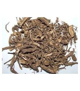 Pokrzywa Indyjska - susz (Coleus Forskohlii)  100g