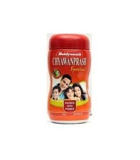 Chyavanprash 1 Kg Baidyanath - Ajurwedyjska odmładzająca pasta ziołowo-owocowa