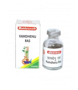 Kamdhenu Ras 10g Baidyanath - Minerały na osłabienie - formuła z siarką