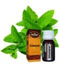 Olejek eteryczny MIĘTA ZIELONA 15ml Niradhi Herbals